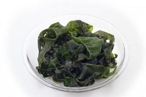 水溶性食物繊維 海藻