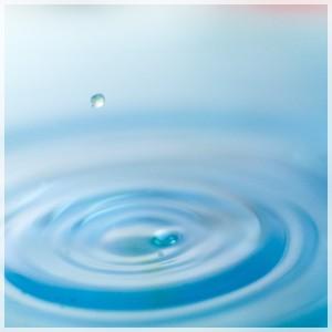 水分バランス